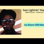 Lightnin Hopkins - Go Down Old Hannah