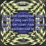 Ronnie Tober - Rozen voor Sandra