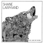 Shane Larmand - Steamroller Dreams